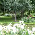 le jardin du brule