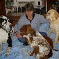 Annie (Déléguée 82) - Tél : 06 74 57 25 86 - annie82@galgosfrance.info