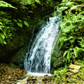 白糸の滝①