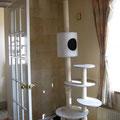 愛犬・愛猫にとっても飼い主様にとっても快適なお部屋が完成しました♪