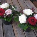 Gesponsert von Flowerevents Meggen