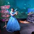 La fée des océans et le voyage de Gaston (2017. Aquarium de Paris)
