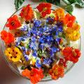 Sommersalat mit Borretsch und Kapuzinerkresse