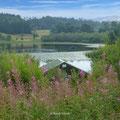 Craigallian Loch, im Vordergrund Weidenröschen
