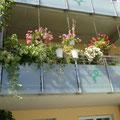 Blumenschmuck am Balkon
