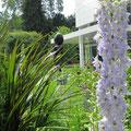 Impressionen durch die Blumenbeete
