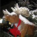 Auf dem Weihnachtsmarkt in Hamm