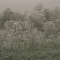 Herbststimmung - © Thomas Kruschina
