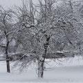 2014 - endlich Schnee  - © Thomas Kruschina