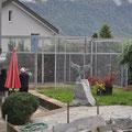 Fundament mit Magerbeton für Vogel Voliere