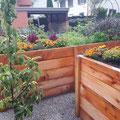Gartenumänderung: Neuer Plattenweg, diverse Hochbeete spezial Anfertigung nach Mass. Hochbeete: Sägerei Schiesser, Schwändi