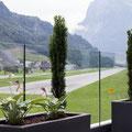 Terassenbepflanzung mit diverses Pflanzen