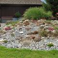 Steingarten mit diversen Pflanzen.  Ein Steingarten ist pflegeleicht fürs das ganze Jahr. Er verzaubert vom Frühling bis spät in den Herbst mit allen Farben.