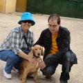 7366, adoptado en 27.2.2013 en Gandia