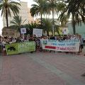 Demonstrationen für das Recht der Tiere