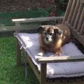 Badoe, adoptado agosto 2010
