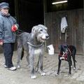 Anka (4031) - recogido 03/2008 y adoptado 2012 (Alemania), es la perra negra