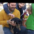 cachorro - adoptado enero 2013 en Gandia