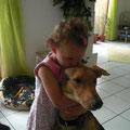 Xino, perro con solo 3 piernas - adoptado en Alemania