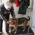 Lilli, adoptado en Gandia, de una familia aleman