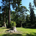 Der riesige Stanley Park grenzt direkt an die Innenstadt von Vancouver.