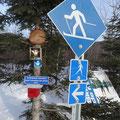 Ski-Langlaufstrecke in Quebec