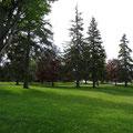 Park-Spaziergang am Lake Simcoe.