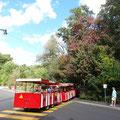 Die Parkbahn im High Park.