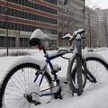Winter in Kanada: Ruhe vor dem Schneesturm.