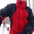 Winter in Kanada: Tour mit dem Hundeschlitten in Ontario.
