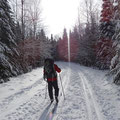 Winter in Kanada: Ski-Wanderung im Nationalpark in Quebec.