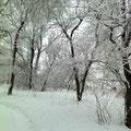 Почему образуются снег и иней?