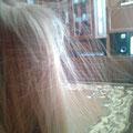 Почему волосы при расчёсывании встают дыбом?