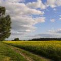 weite Felder, herrliche Natur - der Niedere Fläming