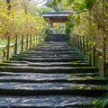 Japan, Kamakura