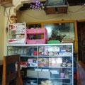 Warung (einheimisches Restaurant) in Padang Bai