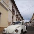 überall hat es VW-Käfer