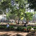 Plaza von Oaxaca