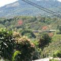 Umgebung Alajuela