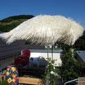 Der Sonnenschirm über dem Schweinchen-Außengehege
