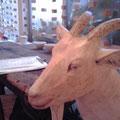 かわいい山羊さんがお出迎え。なんと売り物だそうです!貯金貯金・・・。