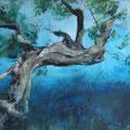 Olivenbaum - 50 cm x 100 cm