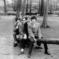 THE OP-SOUND 1967