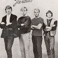 THE HERALDS begin 1966