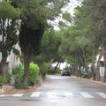 Entorno, Ada Edison Apartamento, www.adapeniscola-apartamentos.com