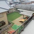 3Fからの風景(園庭側)