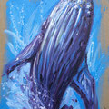 K2- baleine- Huile sur toile brute - 46 x 65 cm - Serge Mazet
