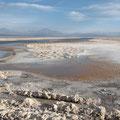 Laguna Chaxa in der Atacama-Wüste