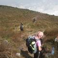 Descente Mont Cameroun