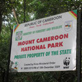 Ascension du Mont Cameroun
